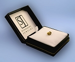 14k Yellow Gold Custom Image Stanhope Charm
