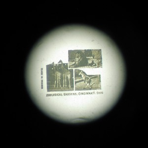3 Views of the Zoological Gardens  Microphoto